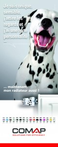 Flash COMAP TotemCampagne Dalmatien